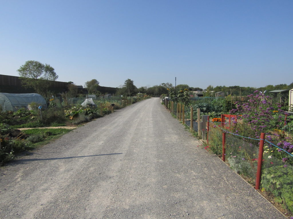 Winnersh Allotments