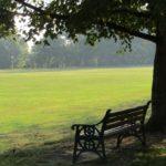 Bearwood Recreation Ground