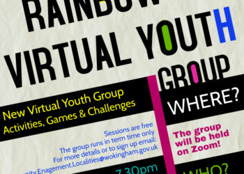 Virtual Youth club
