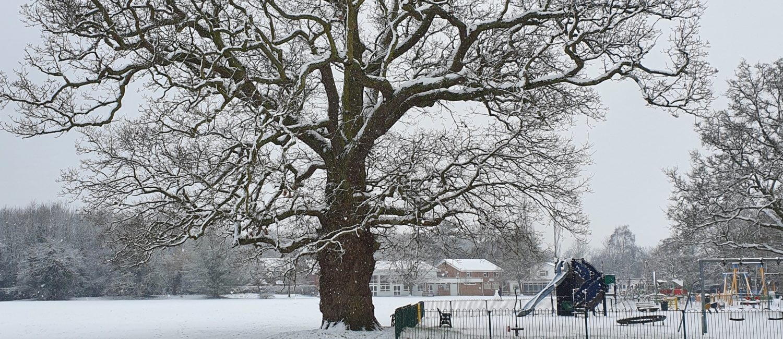 Snow at Bearwood Recreation Ground