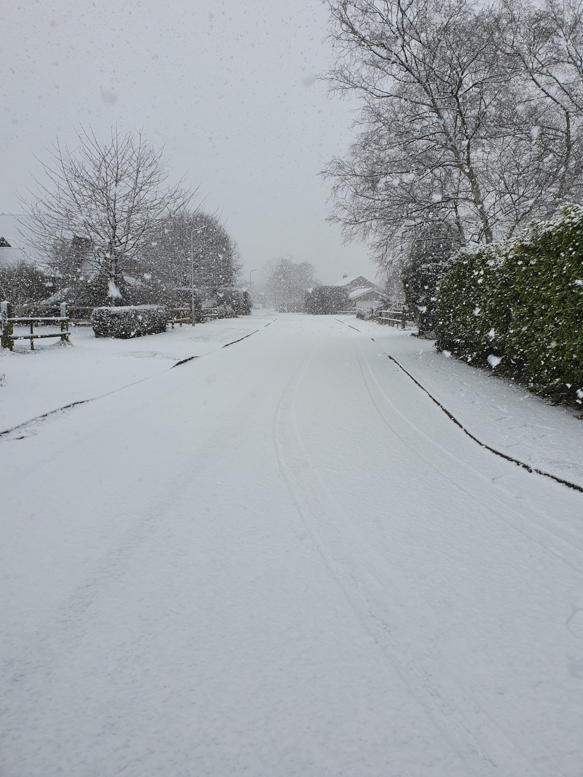 The snow on Mayfields